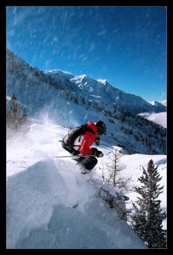 Ski_or_Die_I_by_Pellevinken.jpg